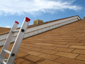 Local Roofer image